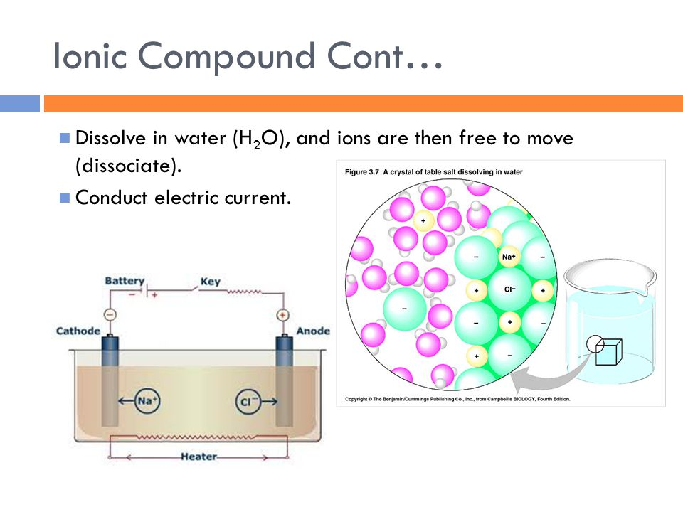 Ionic Compound Cont… Dissolve in water (H 2 O), and ions are then free to move (dissociate). Conduct electric current.