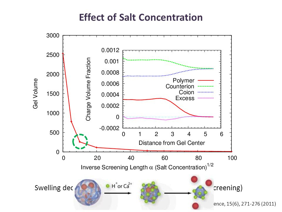 Effect of Salt Concentration Swelling decreases with increase in salt concentration (screening) PK Jha et al, Current Opinion in Solid State and Materials Science, 15(6), 271-276 (2011)