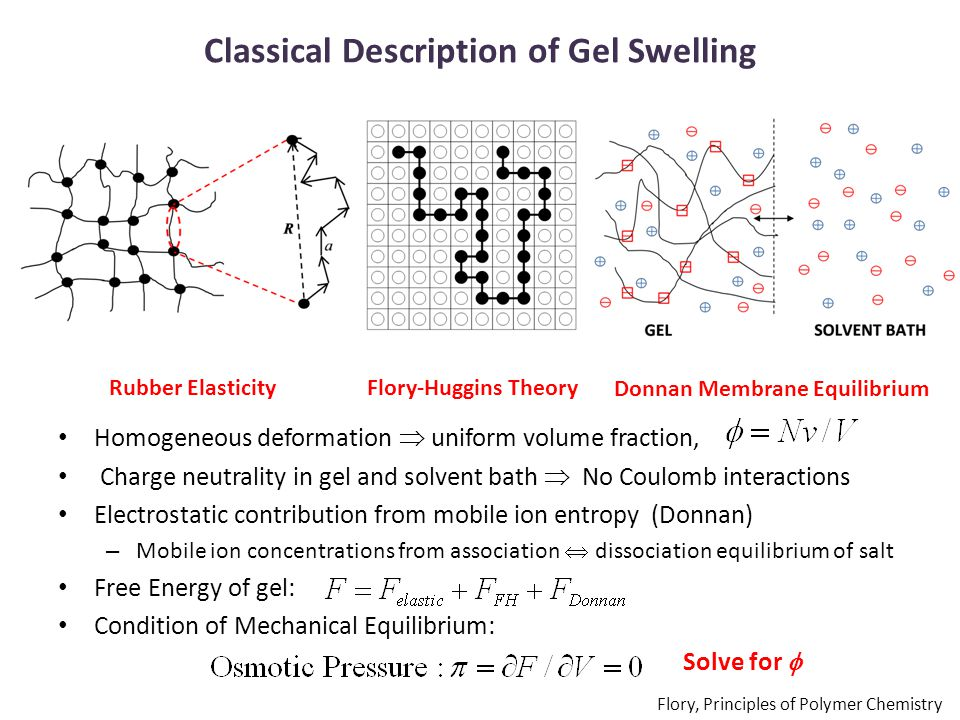 Classical Description of Gel Swelling Rubber ElasticityFlory-Huggins Theory Donnan Membrane Equilibrium Homogeneous deformation  uniform volume fraction, Charge neutrality in gel and solvent bath  No Coulomb interactions Electrostatic contribution from mobile ion entropy (Donnan) – Mobile ion concentrations from association  dissociation equilibrium of salt Free Energy of gel: Condition of Mechanical Equilibrium: Solve for  Flory, Principles of Polymer Chemistry