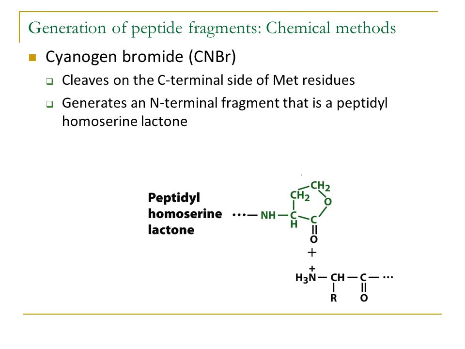 Generation of peptide fragments: Chemical methods Cyanogen bromide (CNBr)  Cleaves on the C-terminal side of Met residues  Generates an N-terminal f