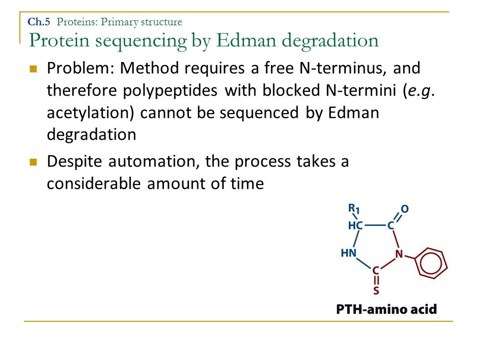 Protein sequencing by Edman degradation Ch.5 Proteins: Primary structure Problem: Method requires a free N-terminus, and therefore polypeptides with blocked N-termini (e.g.
