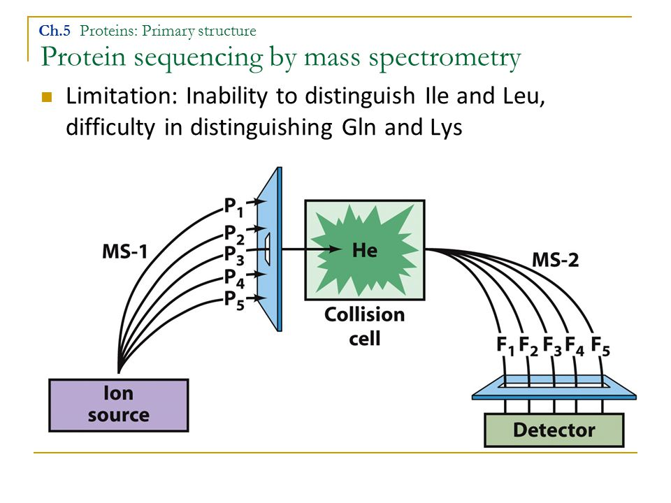 Protein sequencing by mass spectrometry Ch.5 Proteins: Primary structure Limitation: Inability to distinguish Ile and Leu, difficulty in distinguishin