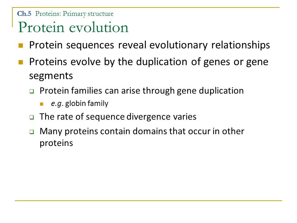 Protein evolution Ch.5 Proteins: Primary structure Protein sequences reveal evolutionary relationships Proteins evolve by the duplication of genes or gene segments  Protein families can arise through gene duplication e.g.