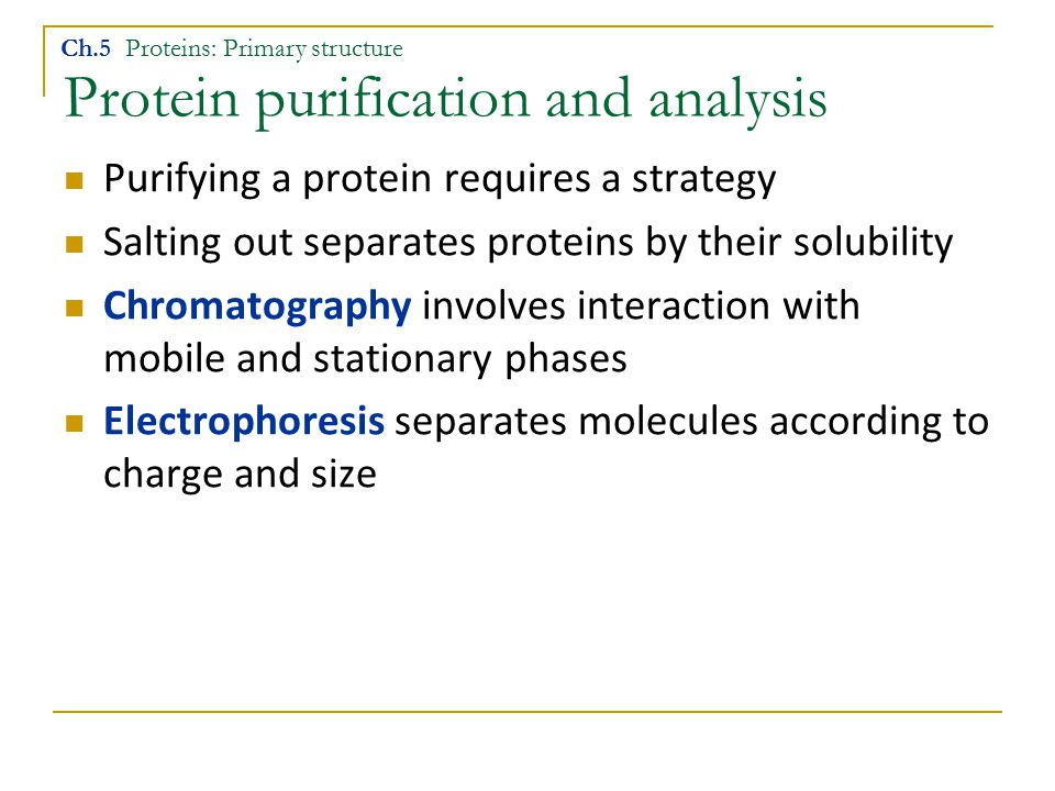 Protein purification and analysis Purifying a protein requires a strategy Salting out separates proteins by their solubility Chromatography involves interaction with mobile and stationary phases Electrophoresis separates molecules according to charge and size Ch.5 Proteins: Primary structure