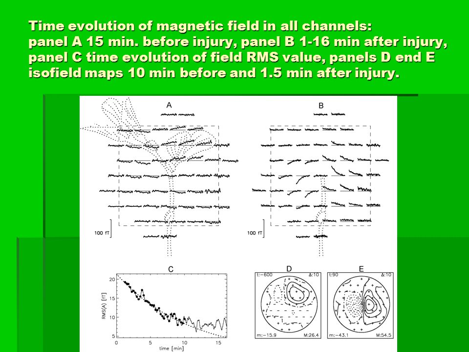 Time evolution of magnetic field in all channels: panel A 15 min.
