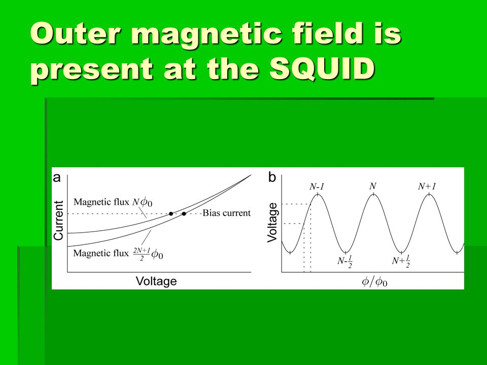 The time evolution of magnetic field (vert. comp.) measured in 37 points above the C. corallina