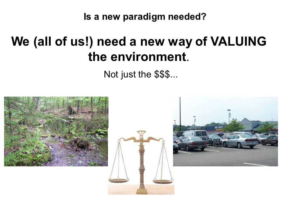 Is a new paradigm needed. We (all of us!) need a new way of VALUING the environment.