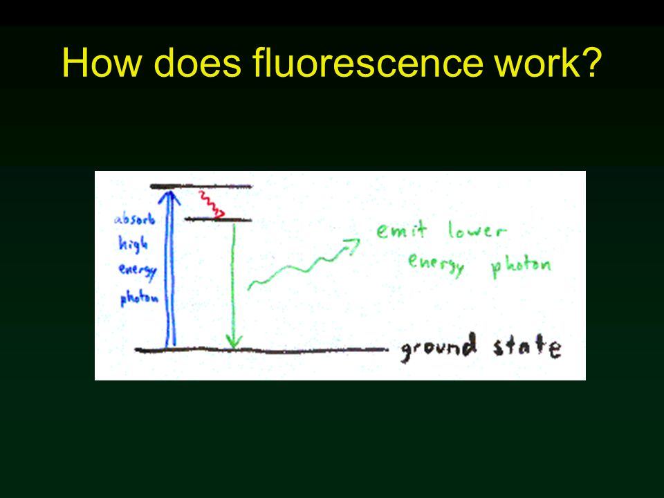 How does fluorescence work