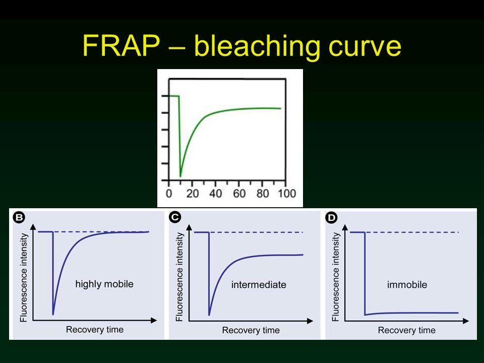 FRAP – bleaching curve
