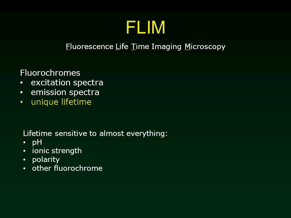 FLIM Fluorescence Life Time Imaging Microscopy Fluorochromes excitation spectra emission spectra unique lifetime Lifetime sensitive to almost everythi