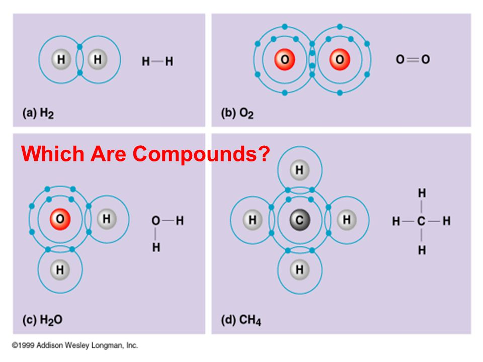 Which Are Compounds