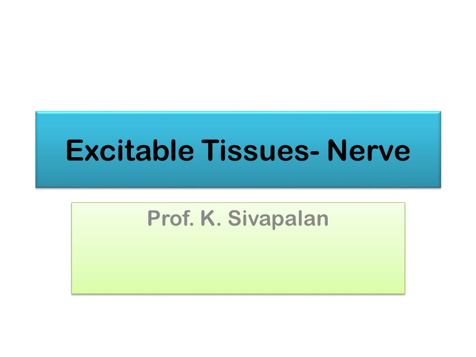 Excitable Tissues- Nerve Prof. K. Sivapalan