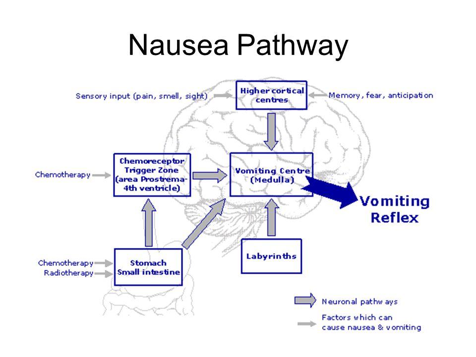 Nausea Pathway