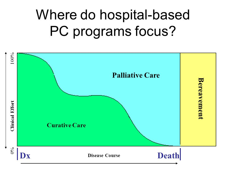 Where do hospital-based PC programs focus.