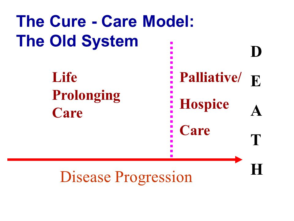 The Cure - Care Model: The Old System Life Prolonging Care Palliative/ Hospice Care DEATHDEATH Disease Progression
