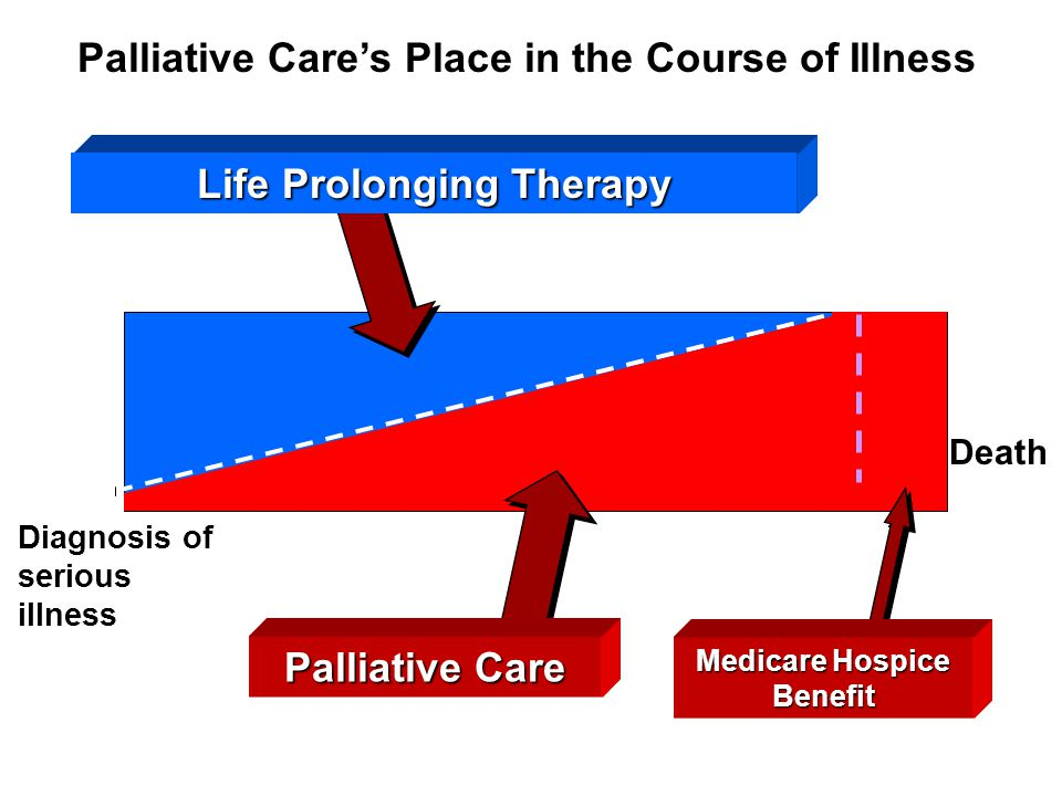 Diagnosis of serious illness Death Palliative Care's Place in the Course of Illness Life Prolonging Therapy Palliative Care Medicare Hospice Benefit