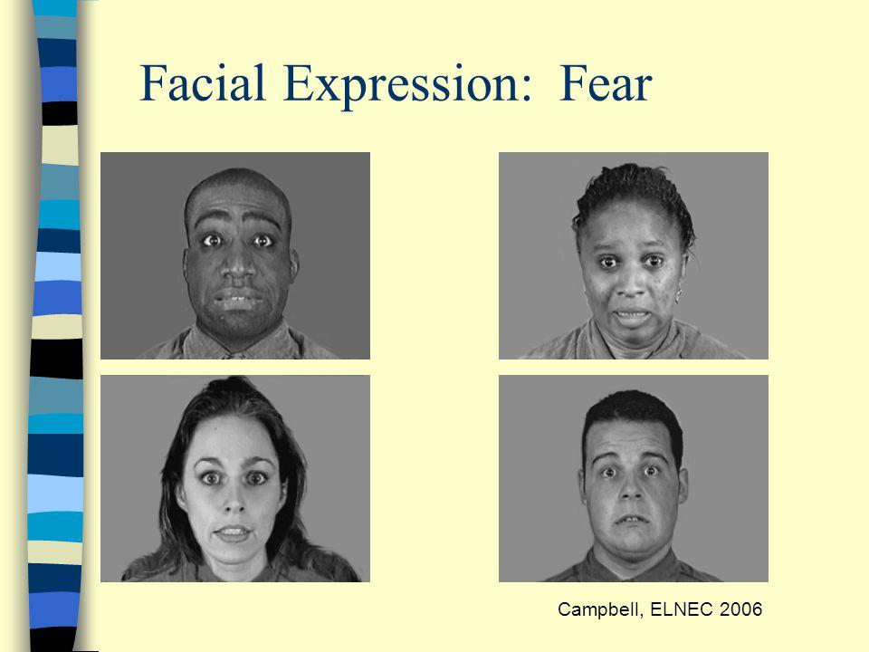 Facial Expression: Fear Campbell, ELNEC 2006
