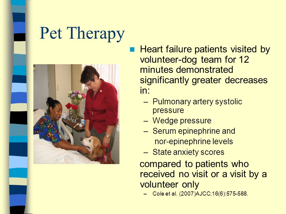 Pet Therapy Heart failure patients visited by volunteer-dog team for 12 minutes demonstrated significantly greater decreases in: –Pulmonary artery sys