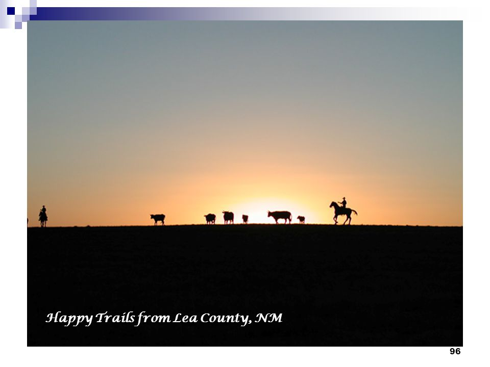 96 Happy Trails from Lea County, NM
