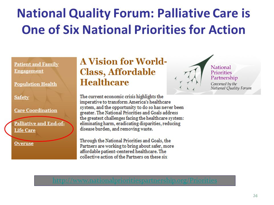 National Quality Forum: Palliative Care is One of Six National Priorities for Action http://www.nationalprioritiespartnership.org/Priorities 36