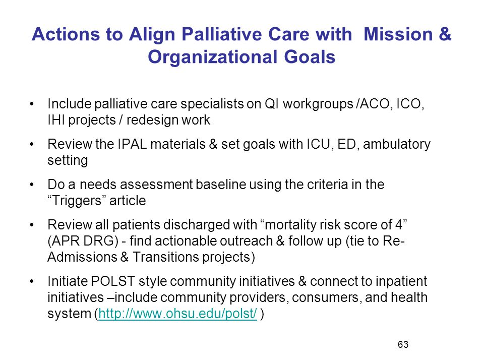 Actions to Align Palliative Care with Mission & Organizational Goals Include palliative care specialists on QI workgroups /ACO, ICO, IHI projects / re
