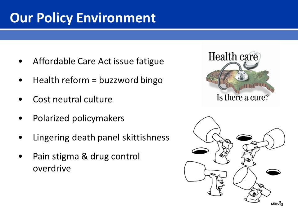 Our Policy Environment Affordable Care Act issue fatigue Health reform = buzzword bingo Cost neutral culture Polarized policymakers Lingering death panel skittishness Pain stigma & drug control overdrive