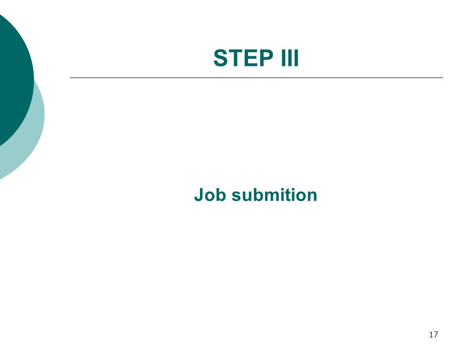 17 STEP III Job submition