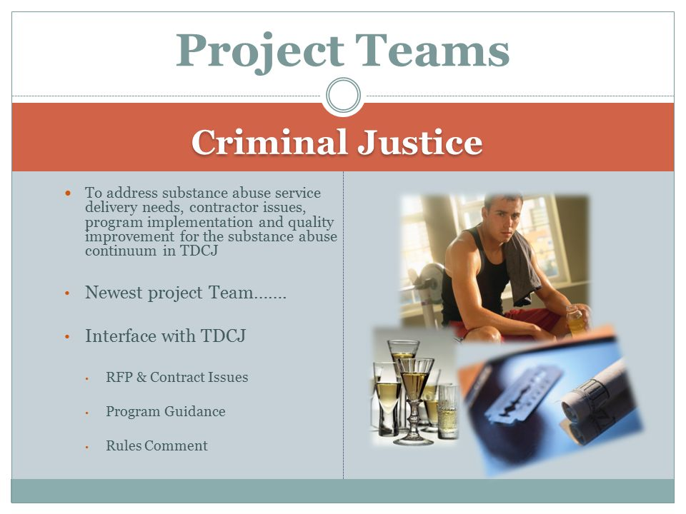 Criminal Justice To address substance abuse service delivery needs, contractor issues, program implementation and quality improvement for the substance abuse continuum in TDCJ Newest project Team…….