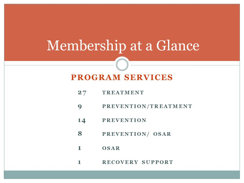 PROGRAM SERVICES 27 TREATMENT 9 PREVENTION/TREATMENT 14 PREVENTION 8 PREVENTION/ OSAR 1 OSAR 1 RECOVERY SUPPORT Membership at a Glance