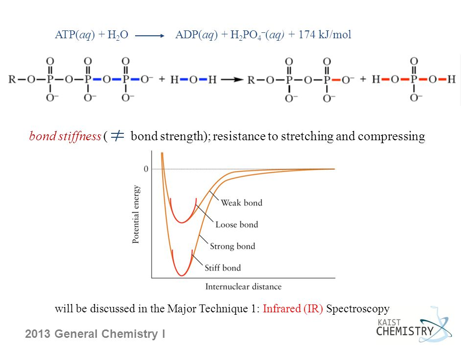 ATP(aq) + H 2 O ADP(aq) + H 2 PO 4 – (aq) + 174 kJ/mol bond stiffness ( bond strength); resistance to stretching and compressing will be discussed in the Major Technique 1: Infrared (IR) Spectroscopy