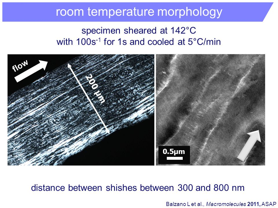 room temperature morphology 200 μm flow specimen sheared at 142°C with 100s -1 for 1s and cooled at 5°C/min Balzano L et al., Macromolecules 2011, ASAP distance between shishes between 300 and 800 nm 0.5μm