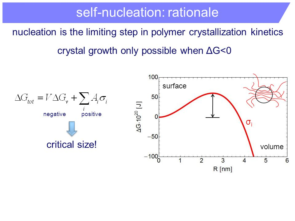 nucleation is the limiting step in polymer crystallization kinetics crystal growth only possible when ΔG<0 self-nucleation: rationale critical size.