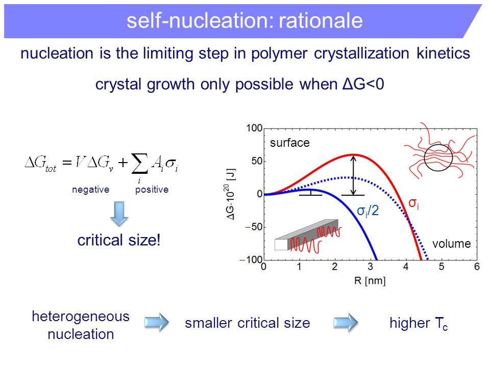 nucleation is the limiting step in polymer crystallization kinetics crystal growth only possible when ΔG<0 σiσi σ i /2 critical size.