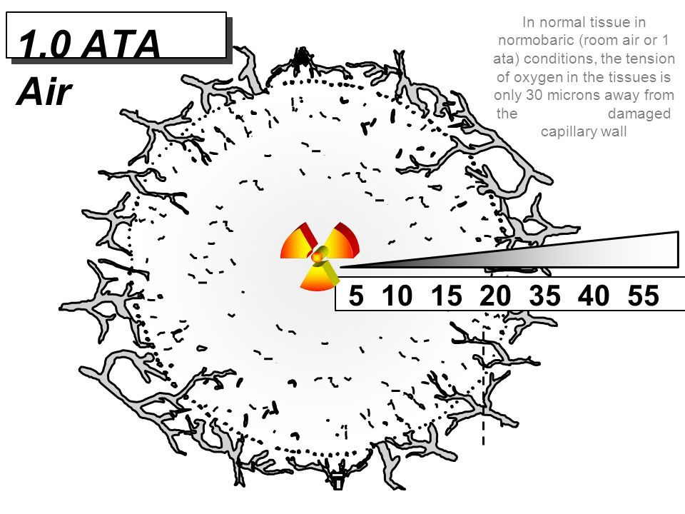1.0 ATA Air 5 10 15 20 35 40 55 In normal tissue in normobaric (room air or 1 ata) conditions, the tension of oxygen in the tissues is only 30 microns
