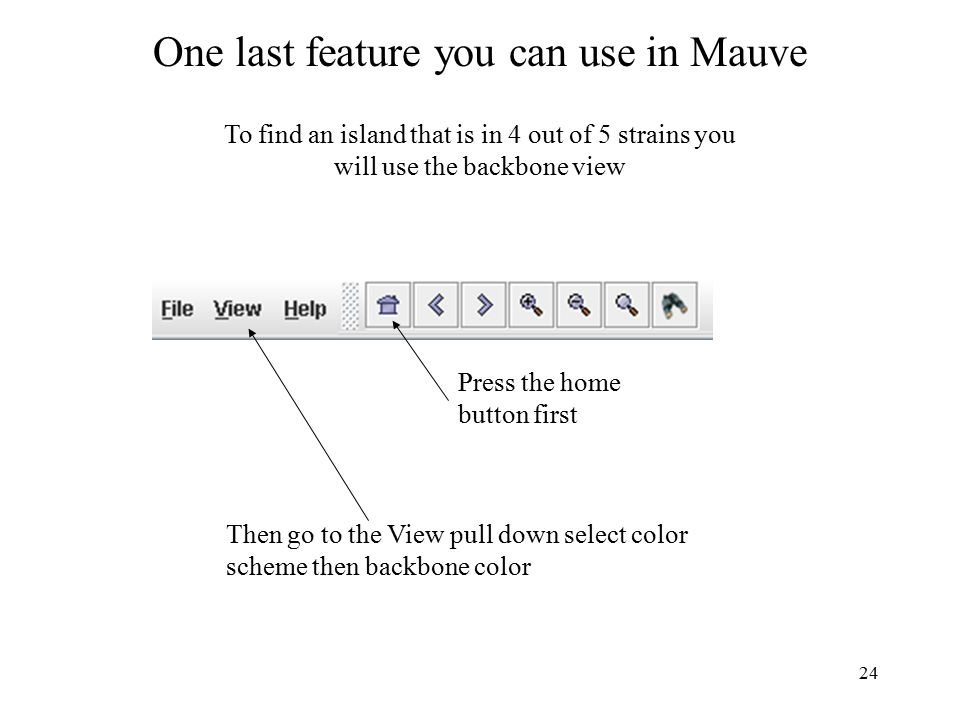 24 One last feature you can use in Mauve To find an island that is in 4 out of 5 strains you will use the backbone view Press the home button first Then go to the View pull down select color scheme then backbone color