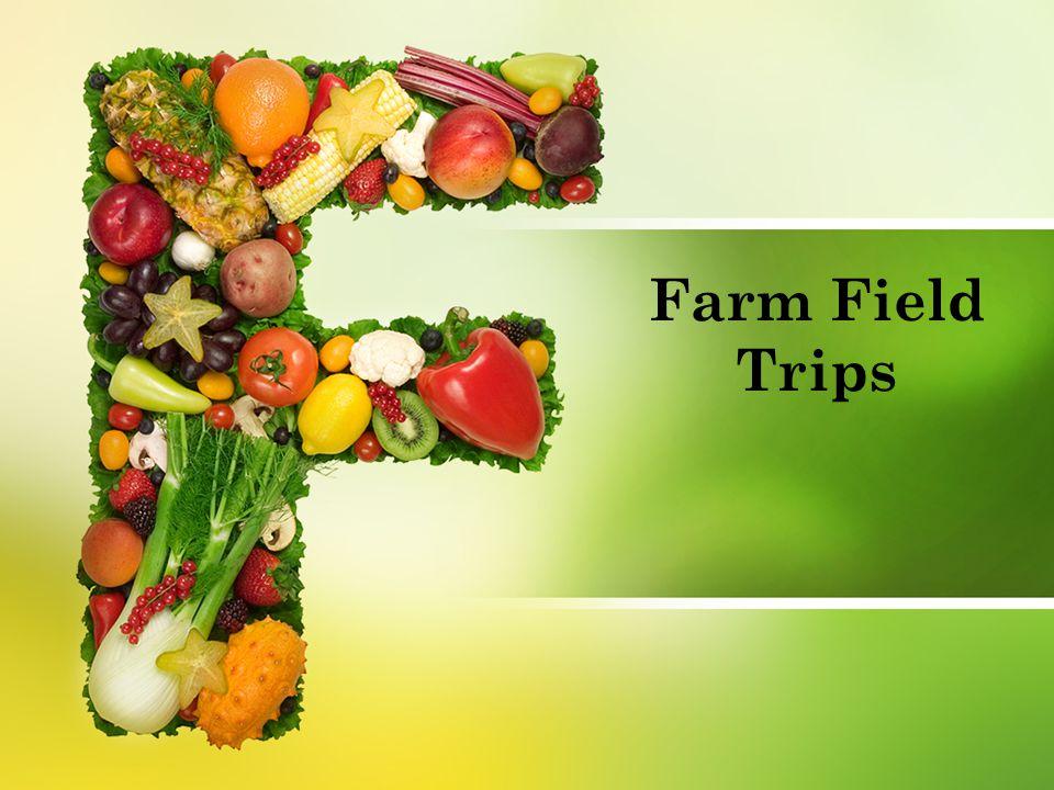 Farm Field Trips