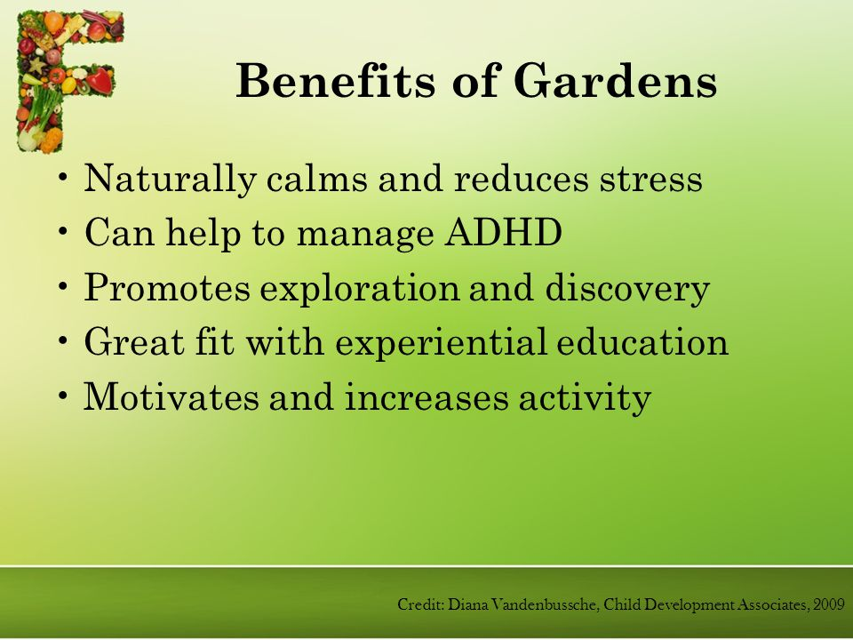Benefits of Gardens Naturally calms and reduces stress Can help to manage ADHD Promotes exploration and discovery Great fit with experiential education Motivates and increases activity Credit: Diana Vandenbussche, Child Development Associates, 2009