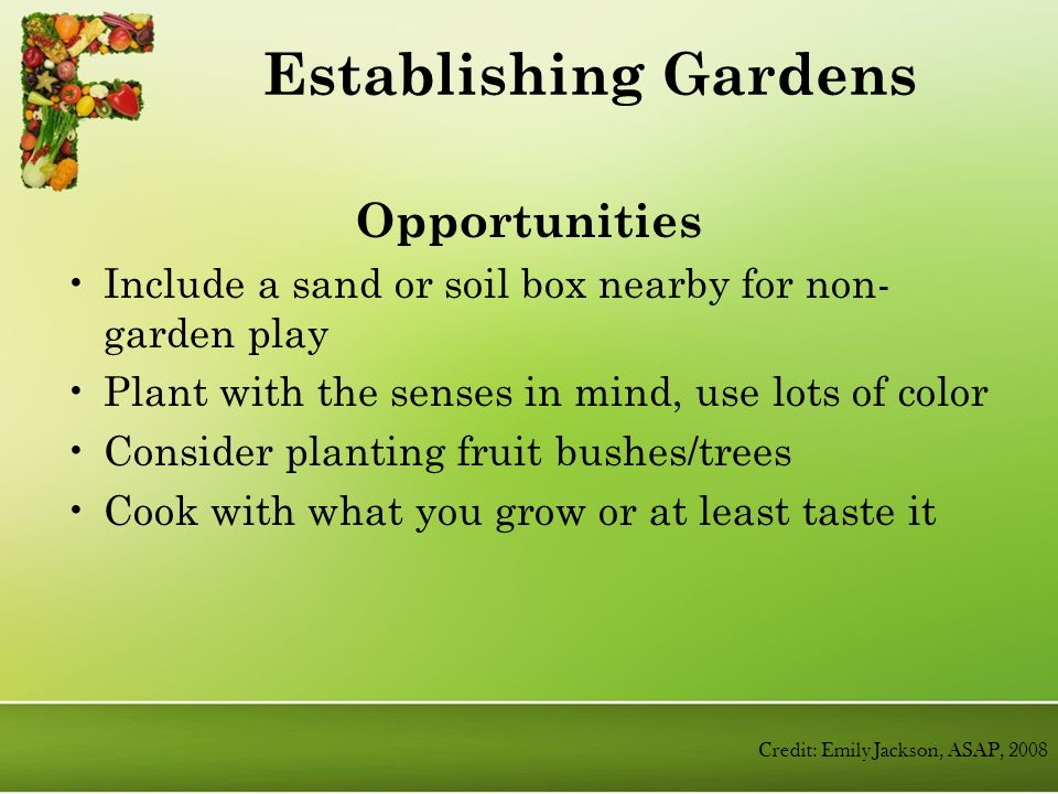 Opportunities Include a sand or soil box nearby for non- garden play Plant with the senses in mind, use lots of color Consider planting fruit bushes/trees Cook with what you grow or at least taste it Establishing Gardens Credit: Emily Jackson, ASAP, 2008