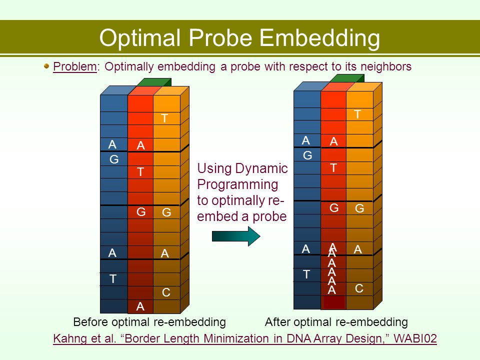 Optimal Probe Embedding T A A G A G T A C A T G Before optimal re-embedding A T A A G G T A C A T G After optimal re-embedding A Using Dynamic Programming to optimally re- embed a probe Problem: Optimally embedding a probe with respect to its neighbors Kahng et al.