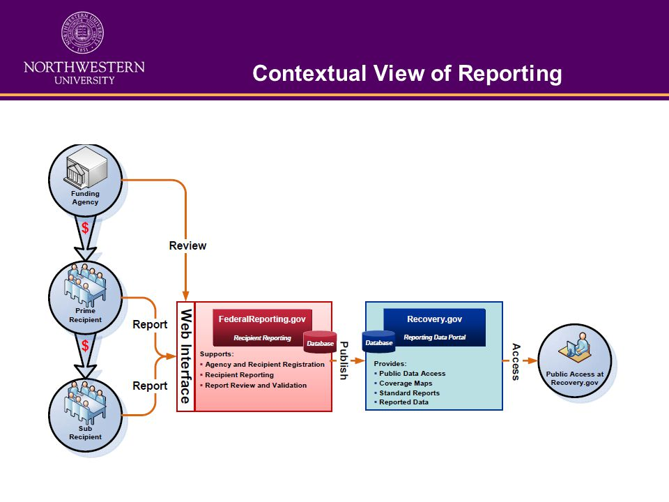Contextual View of Reporting