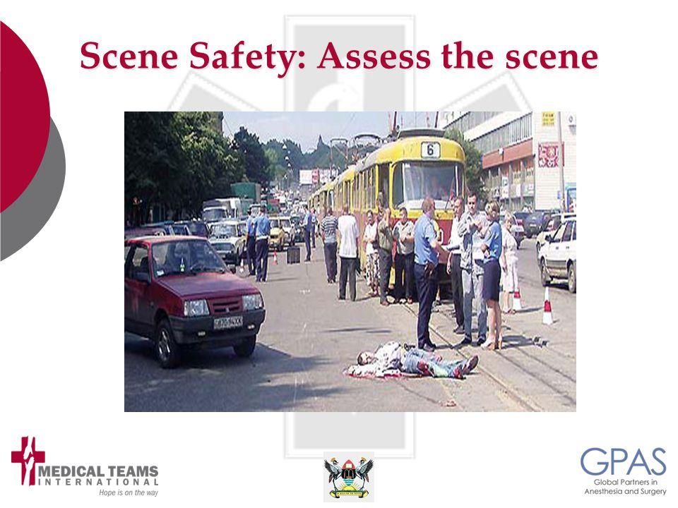Scene Safety: Assess the scene
