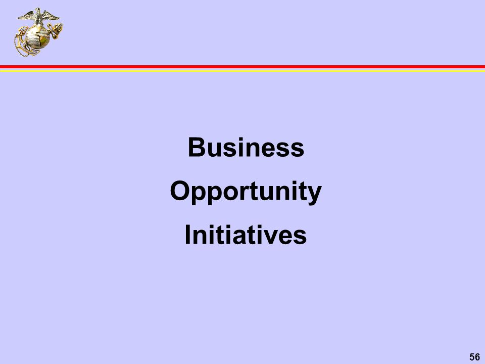 56 Business Opportunity Initiatives