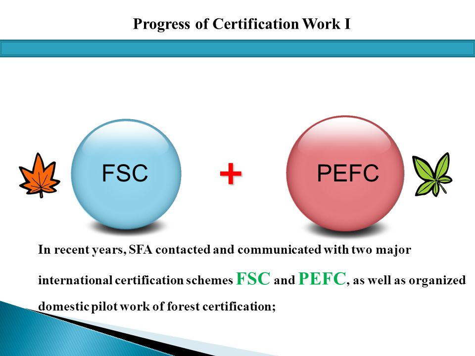 Progress of Certification Work I + FSCPEFC In recent years, SFA contacted and communicated with two major international certification schemes FSC and PEFC, as well as organized domestic pilot work of forest certification;