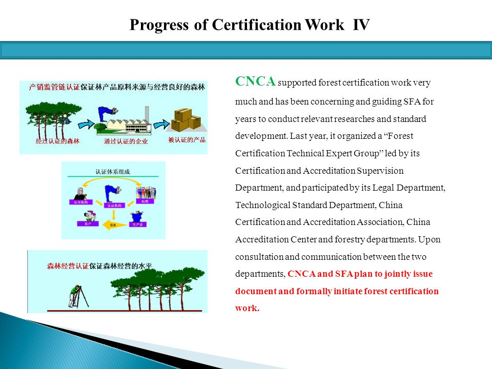 Progress of Certification Work IV CNCA supported forest certification work very much and has been concerning and guiding SFA for years to conduct relevant researches and standard development.