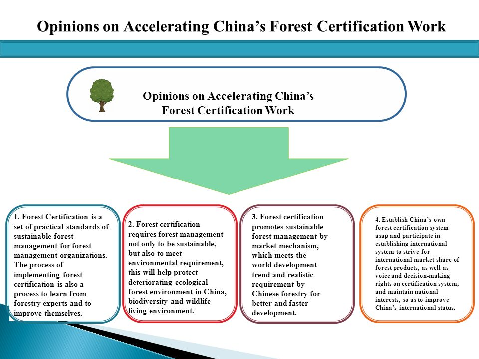Opinions on Accelerating China's Forest Certification Work 1.