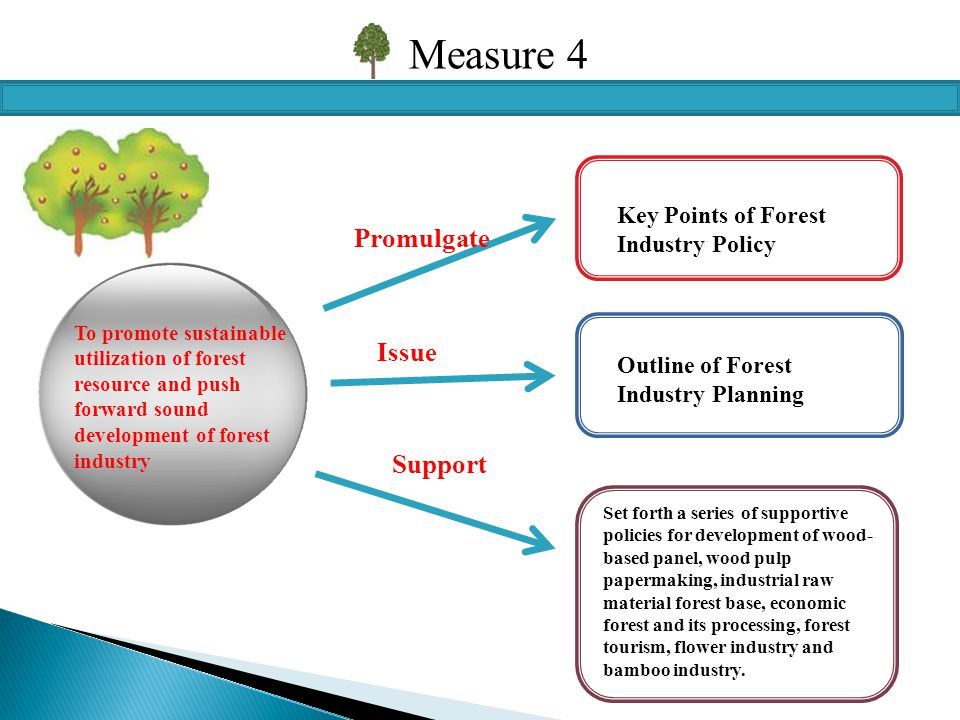 Measure 4 To promote sustainable utilization of forest resource and push forward sound development of forest industry Key Points of Forest Industry Policy Promulgate Issue Outline of Forest Industry Planning Support Set forth a series of supportive policies for development of wood- based panel, wood pulp papermaking, industrial raw material forest base, economic forest and its processing, forest tourism, flower industry and bamboo industry.