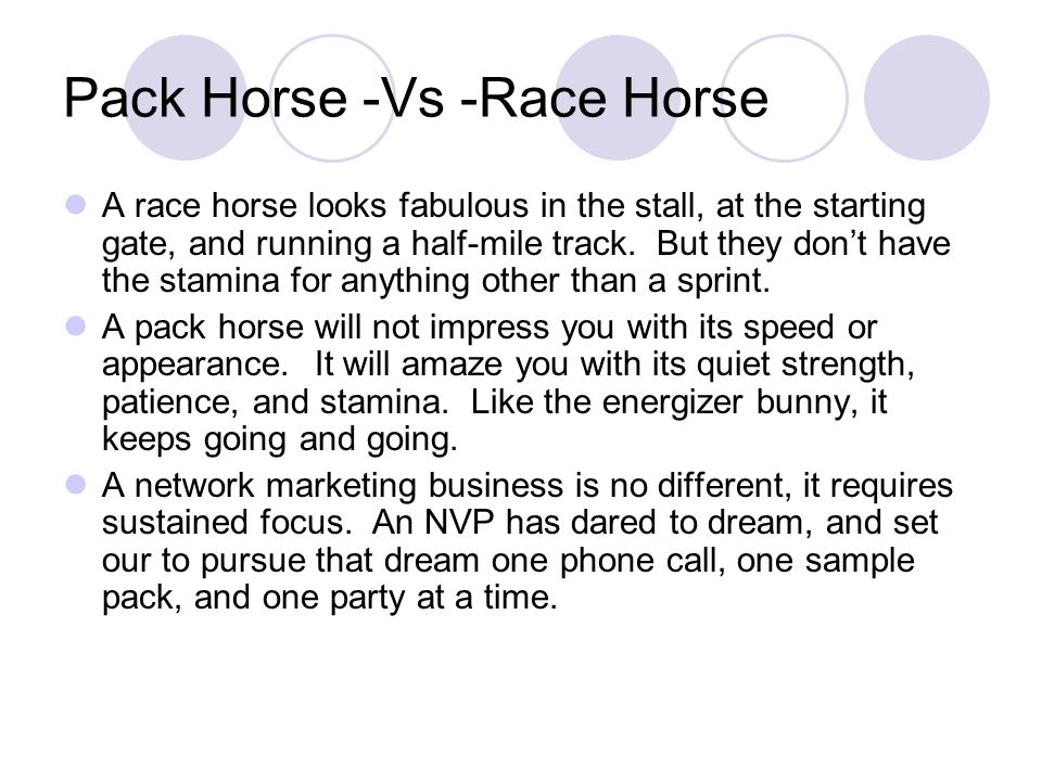 Pack Horse -Vs -Race Horse A race horse looks fabulous in the stall, at the starting gate, and running a half-mile track.