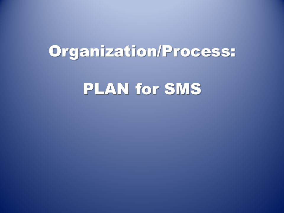 Organization/Process: PLAN for SMS