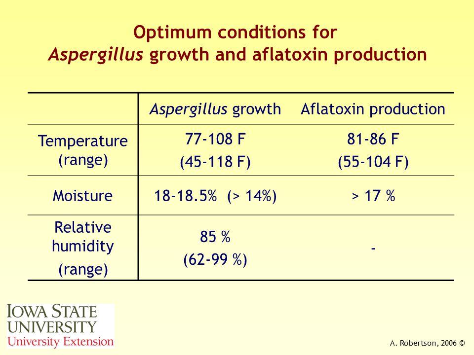 A. Robertson, 2006 © Optimum conditions for Aspergillus growth and aflatoxin production Aspergillus growthAflatoxin production Temperature (range) 77-