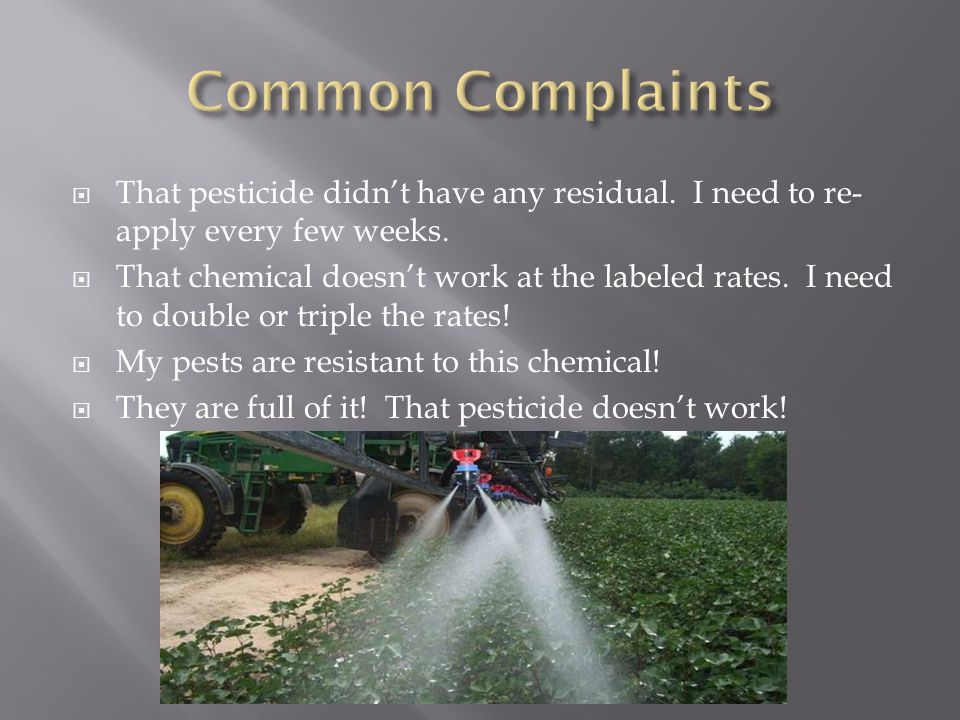  That pesticide didn't have any residual. I need to re- apply every few weeks.